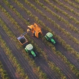 Deutz Gregoire Harvesting